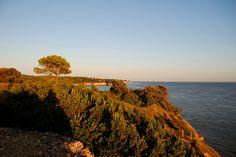 vue des falaises le soleil couchant  #saintgeorgesdedidonne #royan #estuaire #sunset #couchédesoleil #sky #parcdelestuaire #falaise #charentemaritime #mer #océan #sea