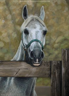 My new painting is done. The wood turned out good and it was my favorite par. Horse Oil Painting, Horse Paintings, Horse Artwork, Horse Drawings, Equine Art, Art Images, Animals And Pets, Art Inspo, Horses