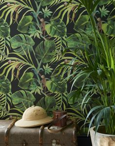 A funny green jungle leaf wallpaper design that is on a colored background with . A funny green jungle leaf wallpaper design that is on a colored background with . Tropical Wallpaper, Colorful Wallpaper, Green Leaf Wallpaper, Monkey Wallpaper, Wallpaper Jungle, Jungle Bedroom, Downstairs Toilet, Downstairs Cloakroom, Bathroom Hooks
