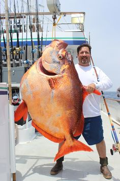 Rare opah catch might be a world record. Joe Ludlow's catch of a opah has been submitted to the IGFA for record consideration; it exceeds the current record weight by 18 pounds Deep Sea Fishing, Gone Fishing, Fishing Tips, Cool Fish, Big Fish, Rare Fish, River Monsters, Giant Fish, Monster Fishing