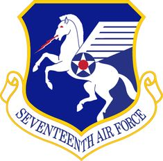 Seventeenth Expeditionary Air Force - Wikipedia Military Service, Military Art, Military Flags, American Uniform, Air Force Patches, Military Insignia, Army & Navy, Us Air Force, Military Equipment