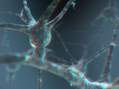 Neuron 3-D conversion by MVRamsey on DeviantArt