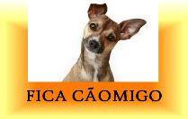"""""""A proteção dos animais faz parte da moral e da cultura dos povos """" (Vitor Hugo) """"Os animais esperam de nós o que nós esperamos dos anjos!"""" (Diele Rodrigues)"""