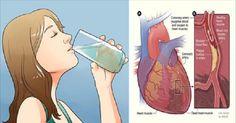 Reduce tu riesgo de cáncer, diabetes y la hipertensión arterial por beber agua de esta manera   Remedios De Hoy