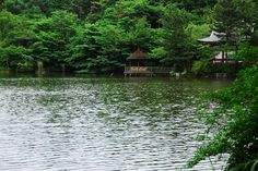 Shakujii-koen, Nerima Tokyo JAPAN