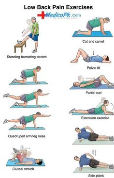 lower back pain exercises.video and photos of lower back pain exercise Lower Back Pain Exercises, Lower Back Pain Relief, Low Back Pain, Stretching Exercises, Lumbar Exercises, Workout Exercises, Lower Back Exercises Strengthen, Low Back Strengthening Exercises, Middle Back Pain