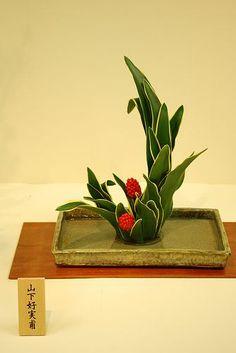 Ikebana#Flower Arrangement  http://flowerarrangement.lemoncoin.org