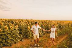 Large Family Pictures, Couple Pictures, Family Photos, Sunflower Photography, Sunflower Pictures, Sunflower Fields, Photos Tumblr, Couple Photography, Photography Ideas