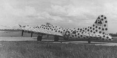 """Aviação em Floripa: Boeing B-17 Flying Fortress """"Spotted Cow"""""""