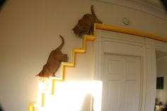 CATWALK - Love this idea but I know my klutzy cat would manage to fall off onto my head.