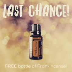 Last chance!  Today is the LAST day to snag your FREE $93 bottle of Frankincense with most of my starter kits and get $100 in your choice of oils!  That is $193 in oils...FREE!  I know crazy right?! . Frankincense is THE most powerful oil on the planet!  The number of things that it can help with (and in a big way) is absolutely astounding! . Jump in now before it is too late! Message or text me so I can get you started on your essential oil journey with all of your freebies! 4803195494 or…
