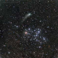 Messier 6 and Comet Siding Spring --- Oct. 17 --- Image Credit & Copyright: Rolando Ligustri (CARA Project, CAST)