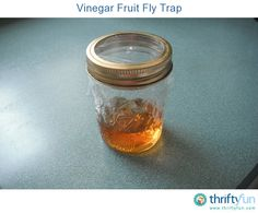 To catch fruit flies in the house, I keep apple cider vinegar in a couple of 6 ounce jelly jars placed around the house and accessible all the time. I like the jar idea because the plastic is held in place with a jar band. The container is small and can easily be placed in any area of the house.