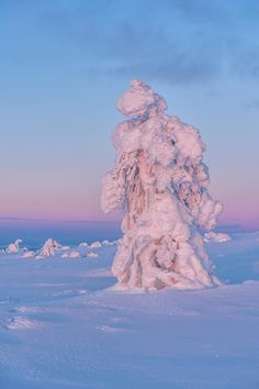 Ice Queen - Winter in Finland #2667