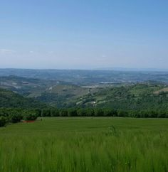 Monferrato  in the spring  by  luigi  rabellino