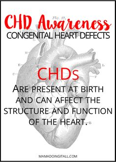 Learn more about Congenital Heart Defects, and ways you can help spread awareness! Chd Awareness, Congenital Heart Defect, Medical Information, Heart Disease, Parenting Advice, To My Daughter, Raising, Tattoo Quotes, Homeschool