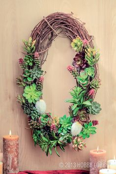 "Succulents are anything but garden variety. So when it comes to putting them on a wreath, try thinking beyond the basic in-the-round frame. Squares are good, and so is this 24"" oval grapevine (available in the Floral Department). Use floral picks, floral  wire or glue (or a combination of them) to keep the plants in place."