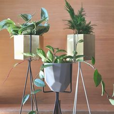 Wonderful Ferm LIVING Plant Stands And Hexagon Pots: