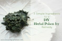 How To Make An Herbal Poison Ivy Remedy, video to help identify Plantain and Jewel Weed