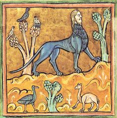 Manticore (Medieval Bestiary)    Manticore from a medieval Bestiary in Latin language.