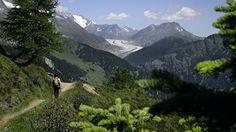 Auf dem Weg von der Nesselalp zur Belalp zeigt sich in mittlerer Ferne der Aletschgletscher.