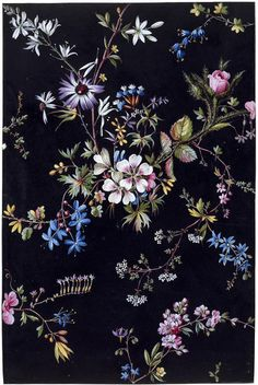 Design from an album of designs for printed textiles by William Kilburn. Textiles, Textile Prints, Motif Floral, Floral Fabric, Flower Wallpaper, Wallpaper Backgrounds, Wallpapers, Textures Patterns, Print Patterns