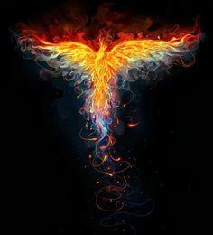 Beautiful representation of the phoenix
