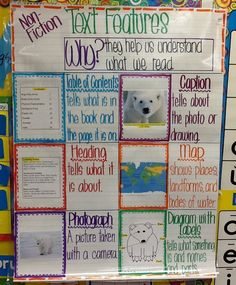 Text features for non-fiction, somewhat color-coded (tee-hee). First grade anchor chart. classroom, anchors, anchor chart text features, featur anchor, anchor charts text features, educ, anchor charts first grade, text features anchor chart, first grade anchor charts