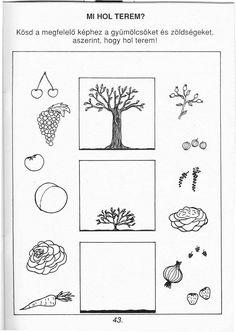 Fotó: Preschool Kindergarten, Preschool Worksheets, Preschool Activities, Activity Sheets, Activity Games, Nature Study, Motor Activities, Autumn Theme, Projects For Kids
