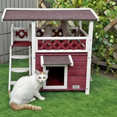 Outdoor Weatherproof Cat Shelter      >>>>> Buy it here   http://amzn.to/2cFybex