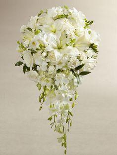 PETALS N BUDS (T.J.Quinn) - White Wonders Bouquet - Interflora
