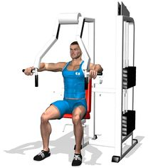 The exercise focuses on the pectoralis major and on extending the external fibres. The exercise involves the anterior deltoid and triceps as secondary muscles.