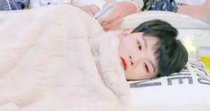Woozi being adorable Seventeen Memes, Seventeen Woozi, Seventeen Debut, Jeonghan, Wonwoo, Kihyun, Wattpad, K Pop, Diecisiete Memes