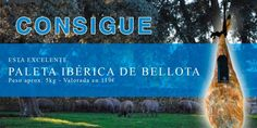 Sorteo de una paleta ibérica de bellota de Jamones Luis Bravo #sorteo #concurso http://sorteosconcursos.es/2017/02/sorteo-una-paleta-iberica-bellota/