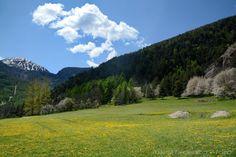 Alta Valle di Susa: meraviglie della montagna e della primavera  #myValsusa 17.05.16 #fotodelgiorno di Federico Milesi