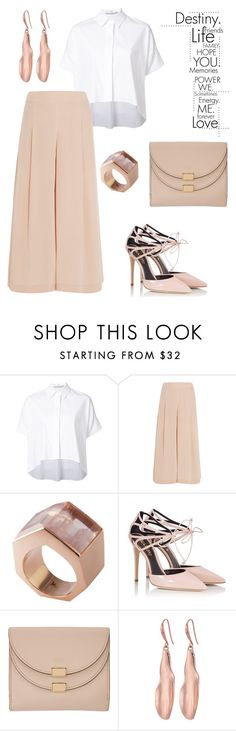 """""""ChicChic."""" by schenonek ❤ liked on Polyvore featuring Alice + Olivia, TIBI, Kattri, Fratelli Karida, Chloé and Robert Lee Morris"""
