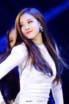 Embedded 1 Rose, Love Rose, Oppa Gangnam Style, Rose Park, Jennie Lisa, Blackpink Photos, Rose Photos, Park Chaeyoung, Blackpink Jisoo