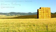 Una parete di paglia http://i-live-in-tuscany.blogspot.it/2014/09/foto-pagliaio-grano-pian-di-laura-toscana.html