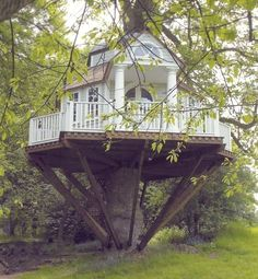 Tree House. I am amazed!
