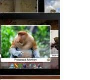 """Geo Walk HD - 3D World Fact Book. [2.99]. Learn about the people, animals, plants, history, and inventions of a given location. Review Source: commonsensemedia.org. """"Loaded with information in easily digestible nuggets, the app makes learning truly fun."""""""