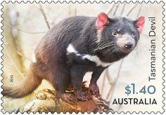 The Tasmanian Devil Australian Native Animals, stamp issue 2015 Bizarre Animals, Australia Animals, Postage Stamp Art, Tasmanian Devil, All Nature, Animals Images, Fauna, Stamp Collecting, Pet Birds