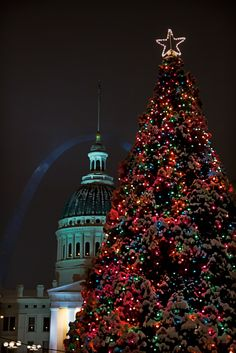 Christmas Tree, Downtown St. Louis