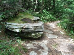 Boulder on the trail to Bromley Mtn VT 7/11/14