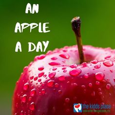 Be sure to remind your child of the importance of brushing twice a day and flossing once a day. Dental Health, Dental Care, Dentistry For Kids, Dental Fillings, Dental Crowns, Brushing, Caramel Apples, Children, Desserts