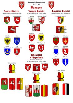 """erdélyi zászlót is tartalmazó """"lengyel"""" de feltehetően a nemzetiségeket jelképező zászlócsoport"""