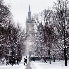 UWO Winter - Prettiest University in Canada - Western University
