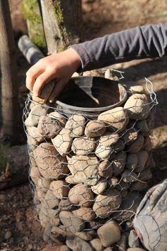 Pillarplanter - Fill your stones only 1/3 of the way up your chicken wire cylinder. Then, add a gallon or half gallon plastic or clay pot inside so the pot's rim is flush with the top of the chicken wire cylinder. Photo © Liesl Clark