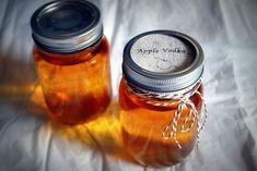 Рецепты настоек из яблок в домашних условиях. Яблочная настойка на водке, спирту, самогоне и коньяке. Просто, доступно и очень-очень вкусно.