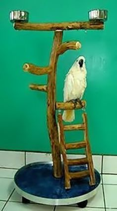Dragonwood Large Rolling Play Stand w Ladder Bird Play Stand Parrot Perch, Bird Perch, Bird Aviary, Bird Play Gym, Parrot Play Stand, Bird Stand, Parrot Toys, Bird Toys, Cockatoo