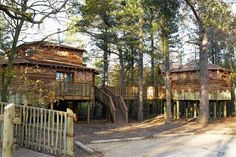 Center Parcs lodges range from ultra-high quality treehouses to comfortable self-catering woodland lodges, all set in beautiful forest. Woodland Lodges, Sherwood Forest, Unusual Homes, Just Dream, Short Break, Western Red Cedar, English Countryside, Best Hotels, Scenery